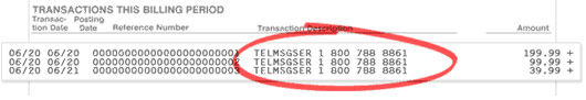 Credit Card Statement - TELMSGER